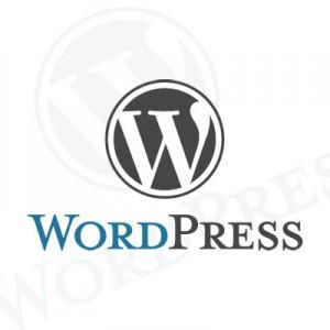 Crear una cuenta WordPress